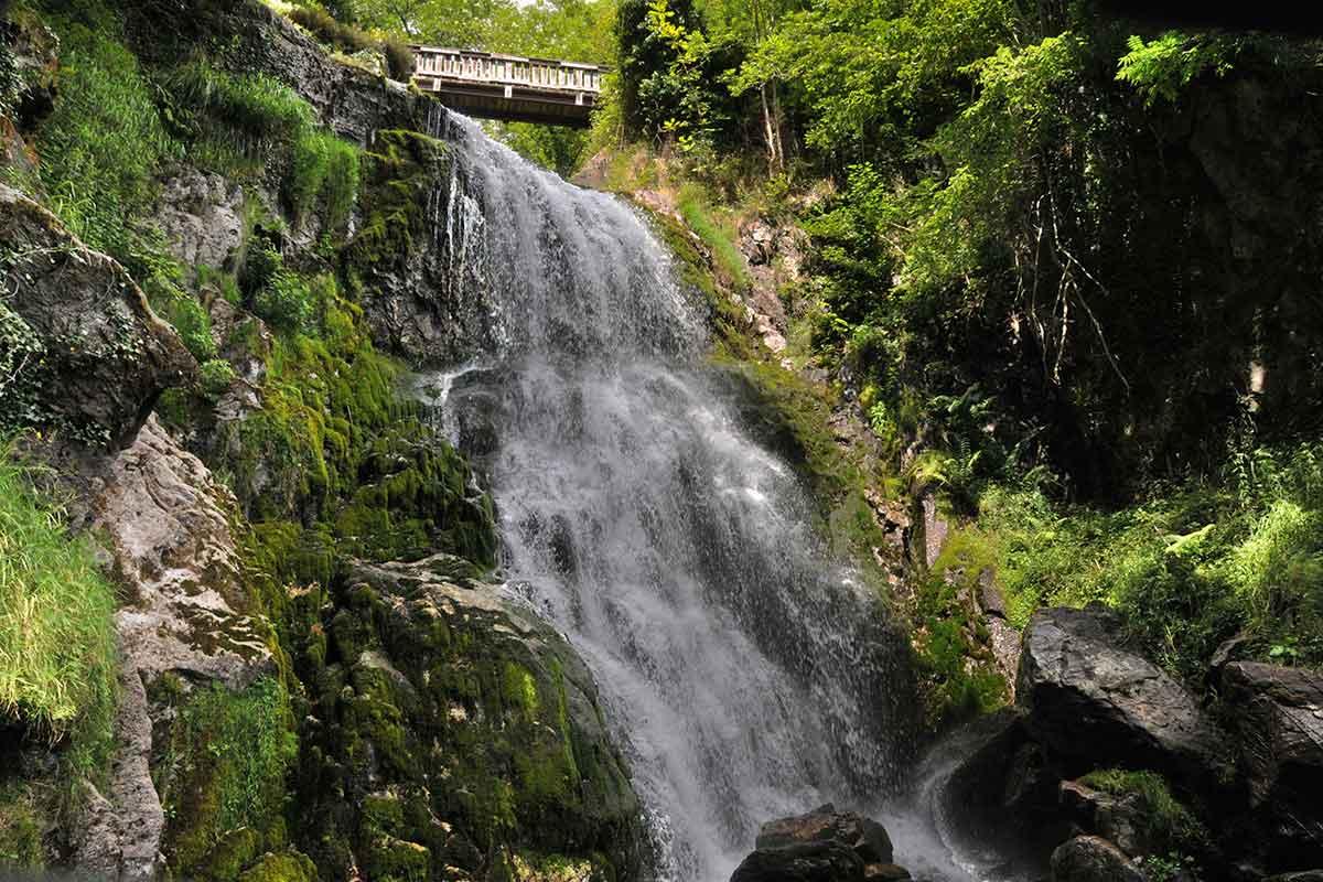 Cascade Magenta